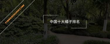 中国十大橘子排名