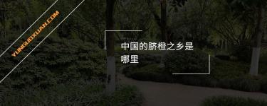 中国的脐橙之乡是哪里?