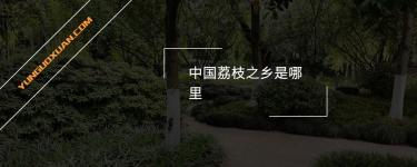 中国荔枝之乡是哪里?