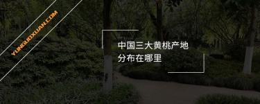 中国三大黄桃产地分布在哪里?