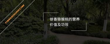 徐香猕猴桃的营养价值及功效